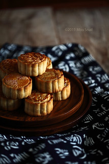 mooncake 4 | by Vivian An