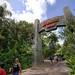 'Entrance To Jurassic Park' (Orlando,FL)
