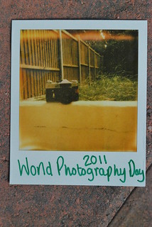 happy world photography day! | by Ben Wolfarth