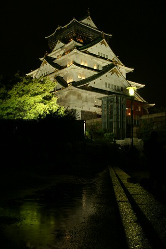 Castle in the night | by coco_tsukihime