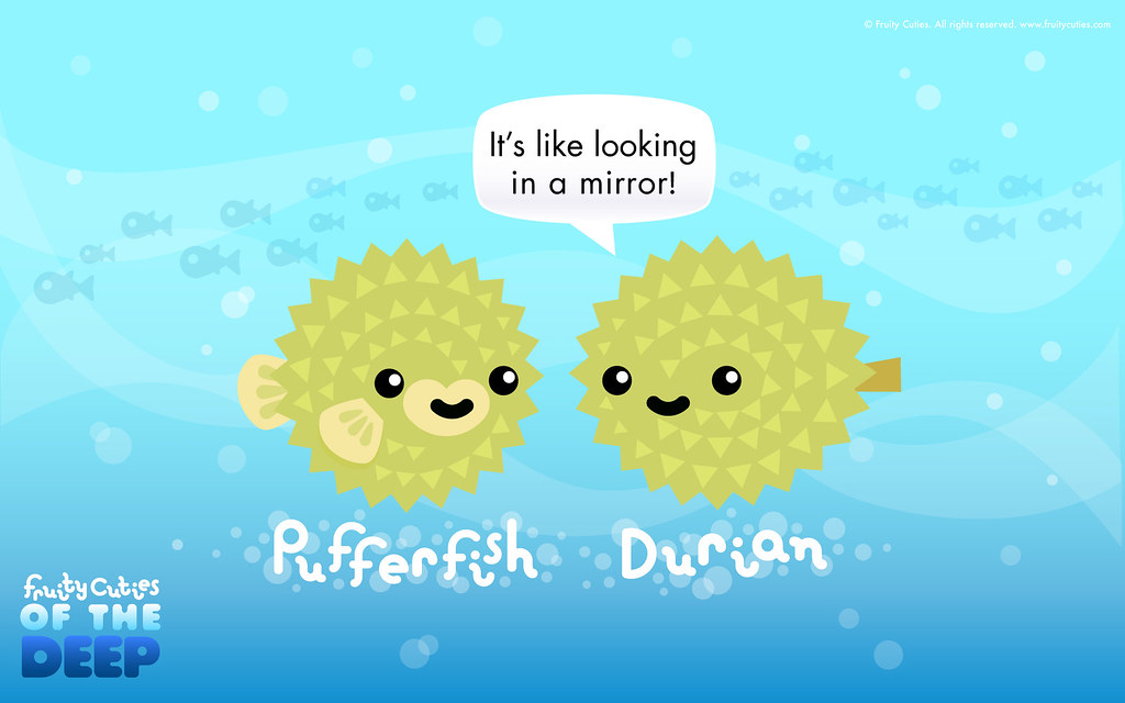 how to catch a puffer fish