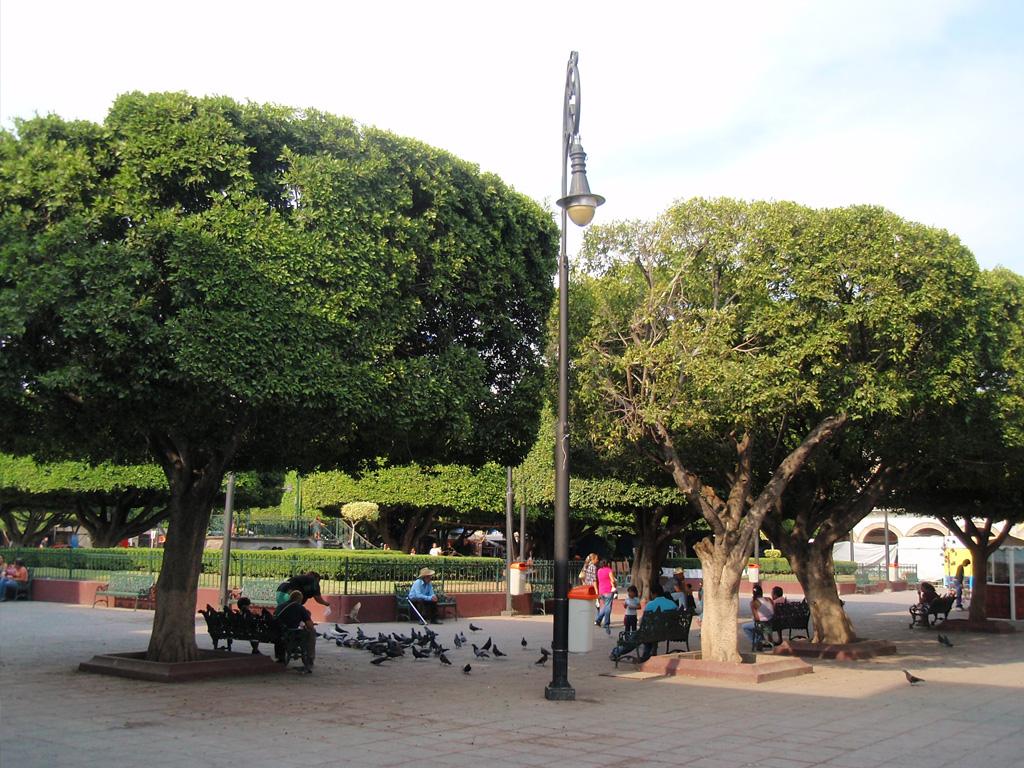 Jard n principal salamanca en este jard n se realizan for 7 jardines guanajuato