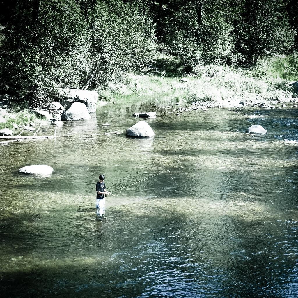 Fly fishing in rock creek location rock creek for Rock creek fishing