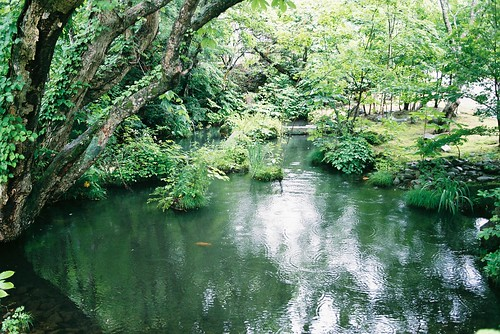 Onsen Gardens | by Kelly  McCormick