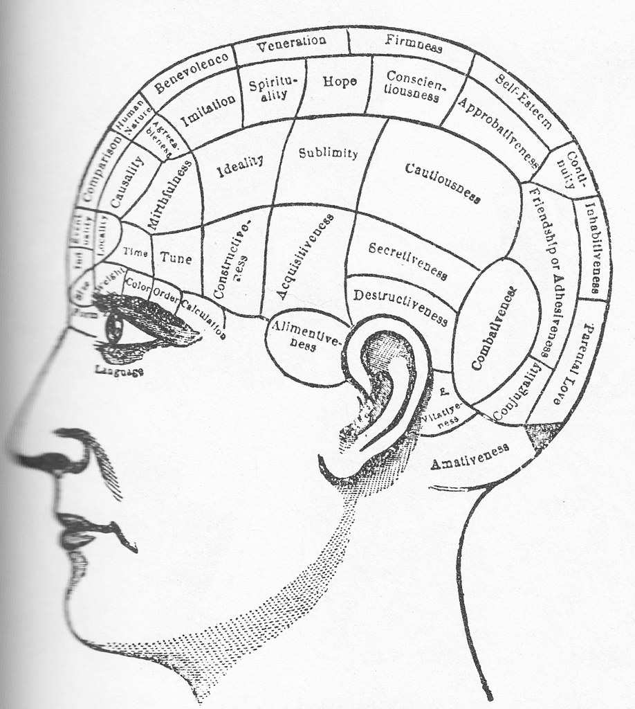 Brain Used As The Illustration To The Poem Quot Lovelorn