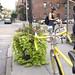 Bike Ride to the Greenest Block in Brooklyn!