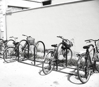 bicycles in the sun | by enza bianchimani