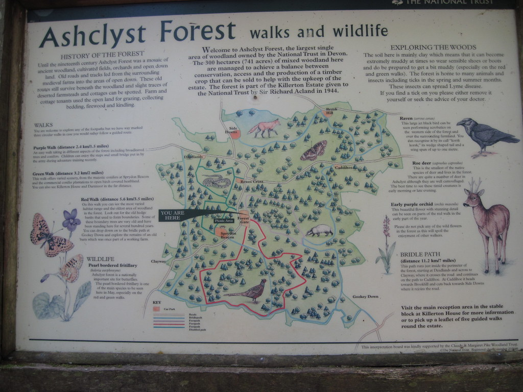Ashclyst Forest Map Ashclyst Forest Is About 800 Acrers