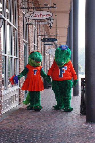 Gainesville Gators | by Visit Gainesville