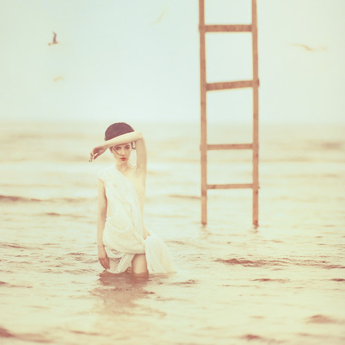muse | by oprisco