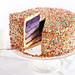 Purple Ombré Sprinkles Cake