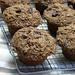 100% whole grain carrot, raisin, zucchini bran muffins 1