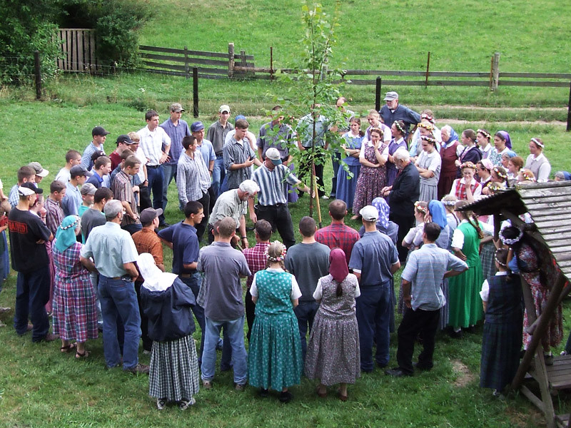 The Apricity Forum: A European Cultural Community