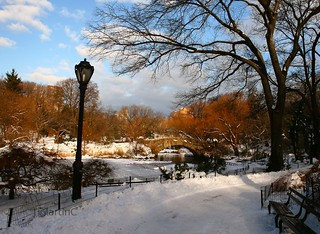 Central Park | by JMartinC