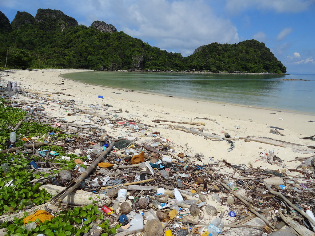 Plastic waste in Lanna Bay, Phi Phi Island