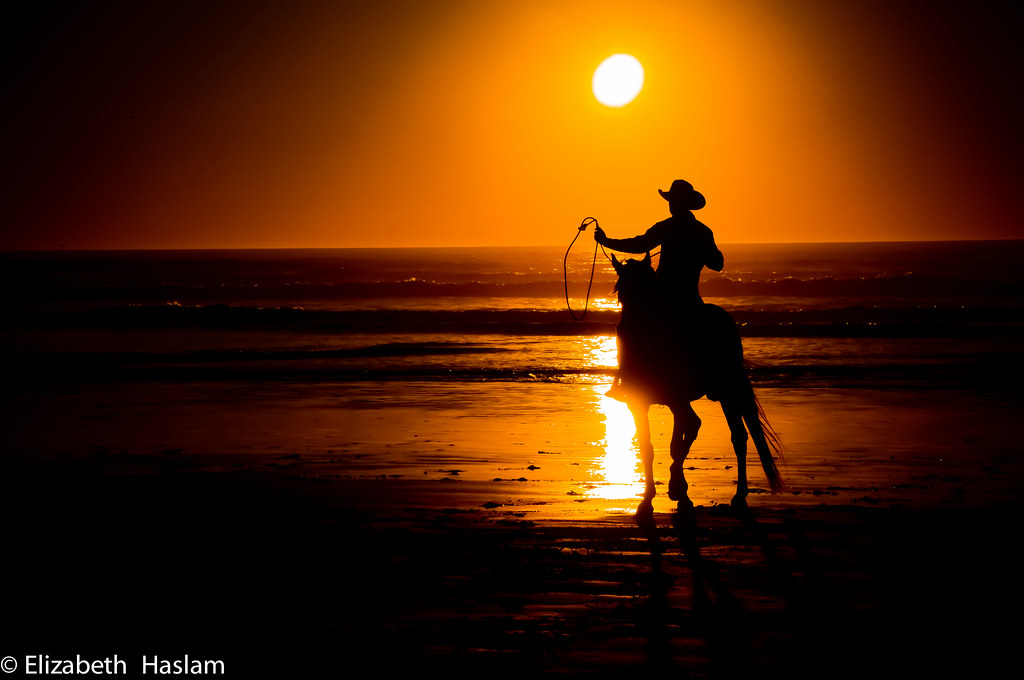 Image Result For Cowboy Riding A