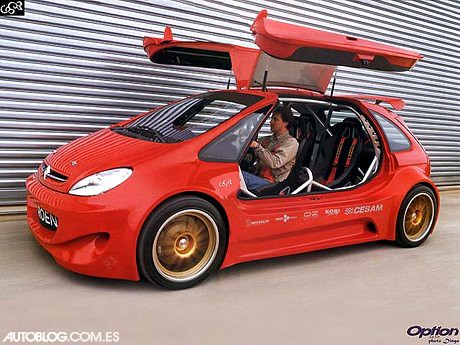 Sbarro citro n xsara picasso cup custom 2002 meets the for Interieur tuning auto