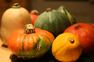 Squash | by UncleBucko