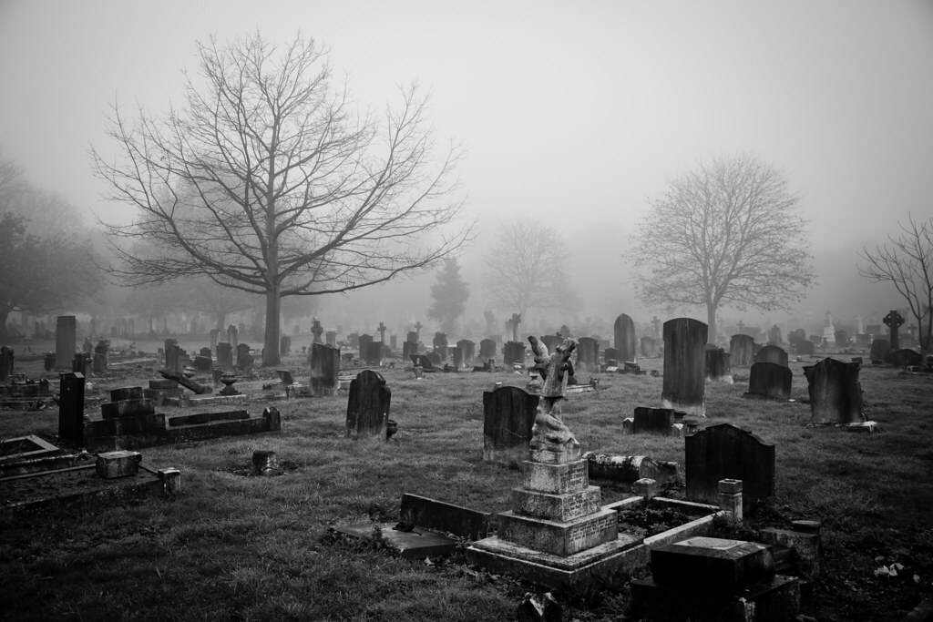 "Misty Graveyard"" by Robert Goulet | Redbubble"