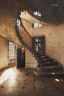 dame de l'escalier | by silent witnesses