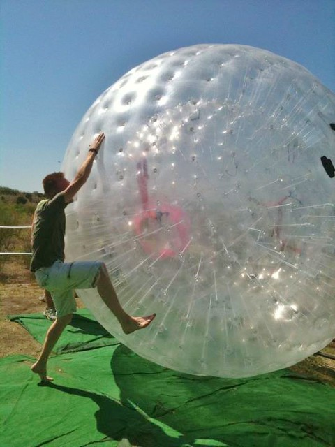 Giant Hamster Ball Flickr Photo Sharing
