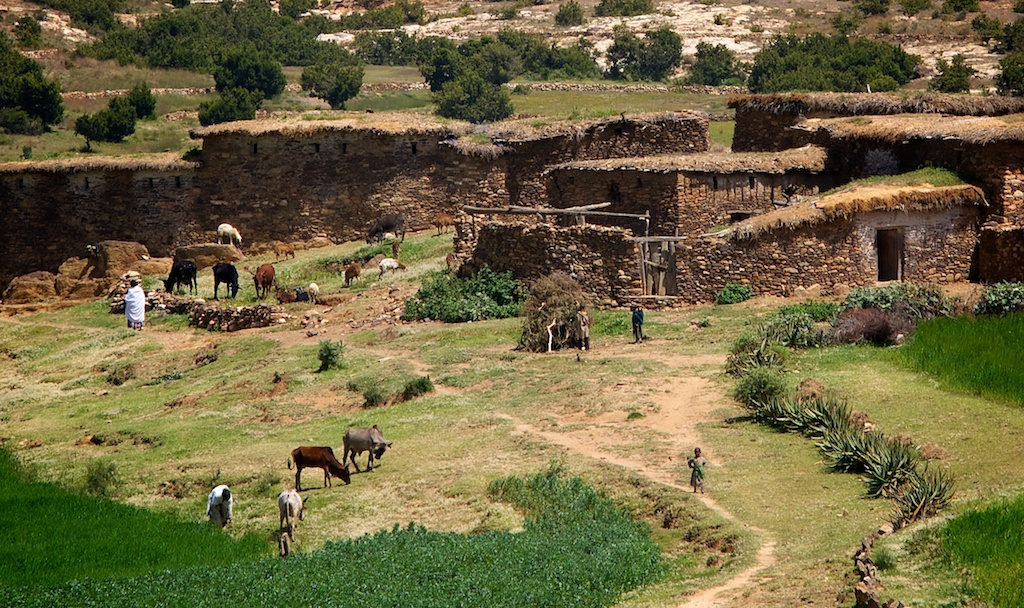 Farm in Agobo village - Atsbi, Tigray, Ethiopia | I saw ...