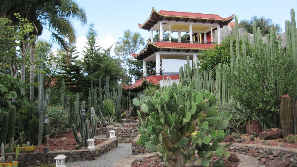 Vivero el japones tepatitlan jalisco jardin del for Vivero el jardin