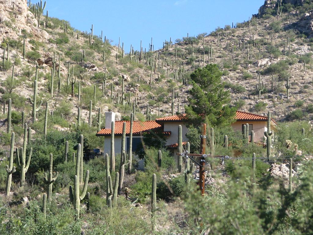 Jobs In Tucson Az Saguaro National Park Joe Parks Flickr