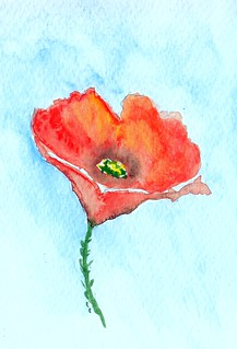 Watercolour poppy | by Elenatgeezer