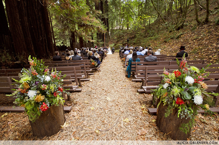 susan ians redwood forest wedding by alicia oblander