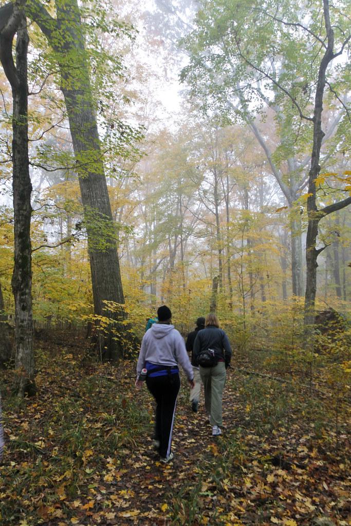 Mile Hike Long Island Green Belt Trail
