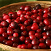 port cranberries 4
