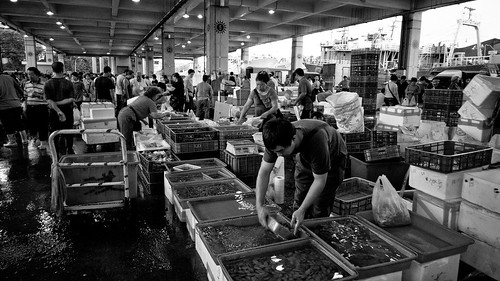 Fish market-06 | by ☀Solar ikon☀