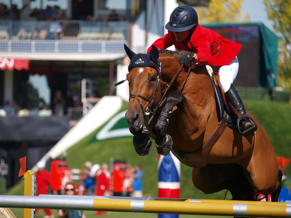 Horse Show Jumping at Spruce Meadows | www.wilsonhui.com ...