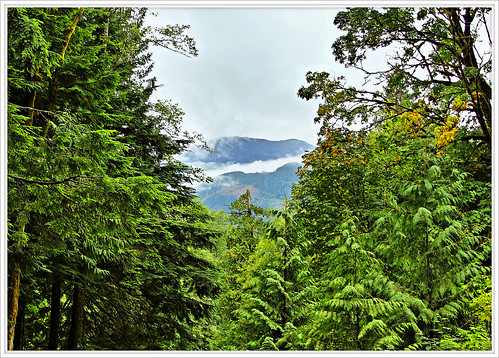 Nature's Path to the Mountains | by Charles Lamoureux