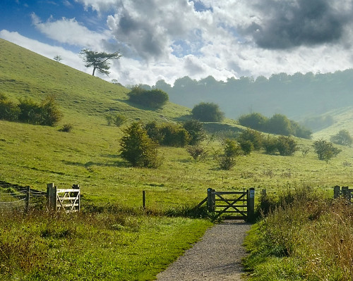 St Catherine's Hill at Winchester | by Beardy Vulcan