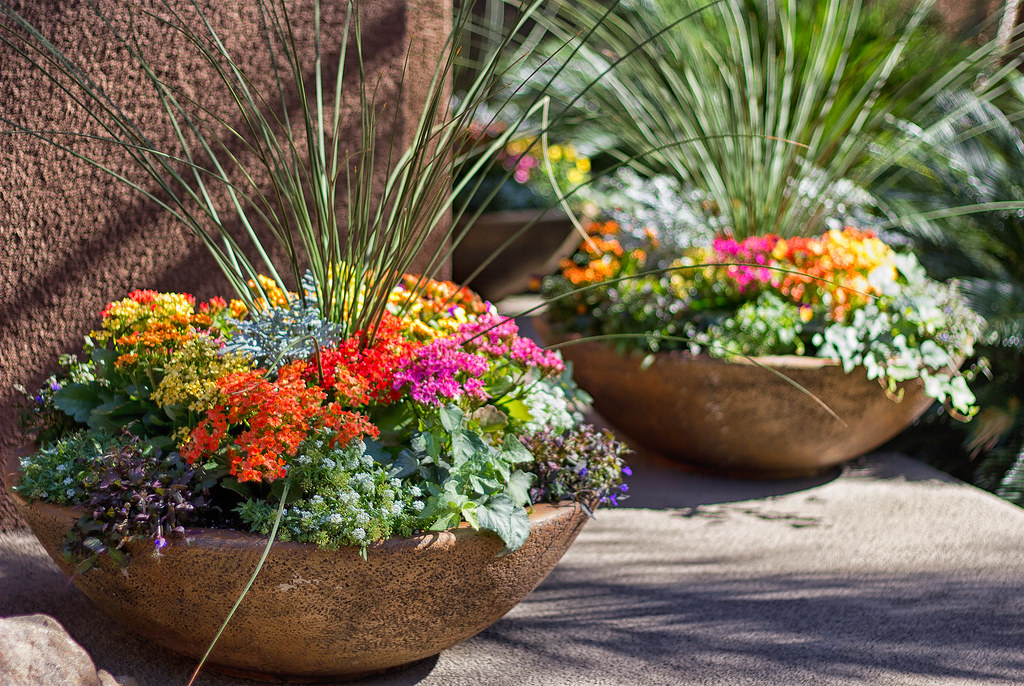 Image result for fall flowers pot