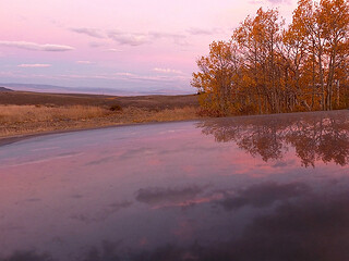 Gypsy Reflecting on a Fall Sunrise | by Kahlee Spiritdancing