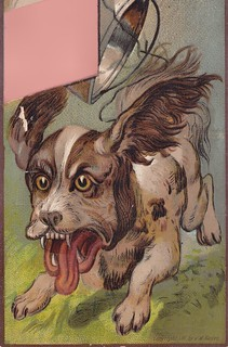 Antique Trade Card - Mean Dog 1 | by Fleur-de-louis