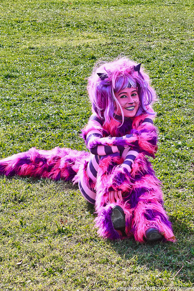 Make A Cat Girl Costume For Cosplay