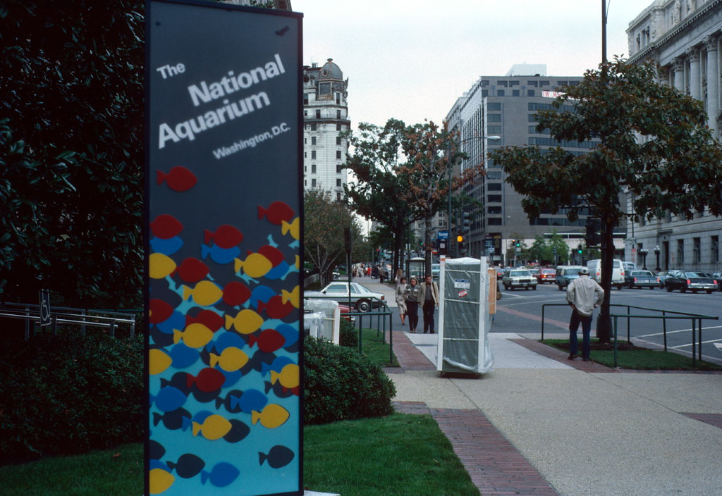 Signboard national aquarium 14th st nw washington dc for Aquarium washington dc