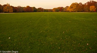 the Great lawn | by saurabh.dogra
