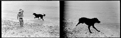 Zorki 4k Leg Pro 100 Indie and Liam HB Diptych | by Miles Davis (Smiley)