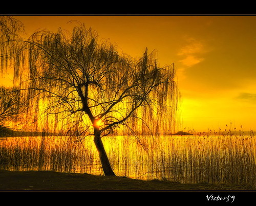 Tramonto sul Lago | by sirVictor59