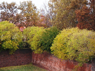 Ferrara: autumn on its ancient walls - Ferrara: autunno sulle sue antiche mura | by SissiPrincess