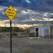 Salton Sea (11)