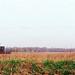 Farm ~ Genoa Township ~ Near Howell, Michigan