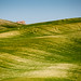 Val d'Orcia, Toscana #5 - Rolling Hills ~ Italy