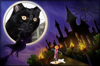 Happy Halloween From Blacky... 31/10/2011.. | by Michelle ~ Blacky ~ Champaz's Captures....