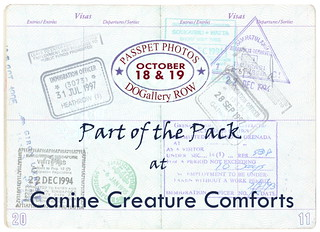 PASSPET PHOTOS - CCC Part of the Pack | by staymor.com